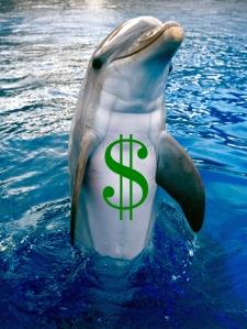 industria delfin