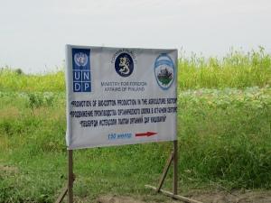 algodón orgánico Tajikistán- Foto de UNDP