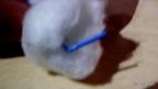 3. Coloca el clip a lo largo del cuerpo del muñeco para darle estabilidad