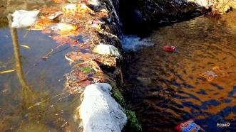 Los plásticos invaden los arroyos de Griñón, Madrid. | Fotografía: Virginia Villaplana. |Todos los derechos reservados.