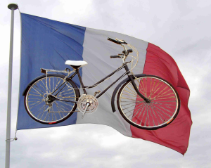 bici.fw